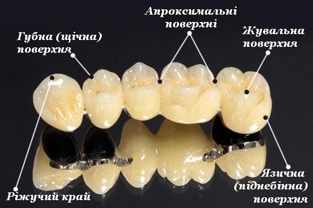Зубні поверхні