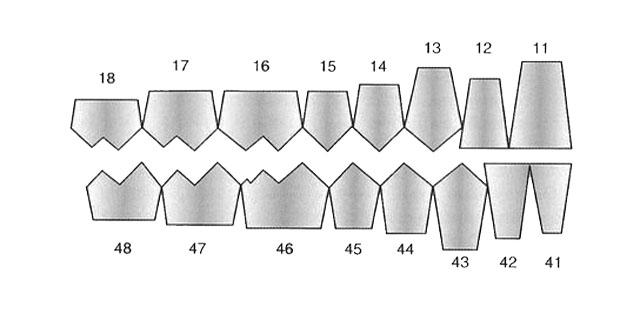 Мал. 3. Схема розташування зубів-антагоністів